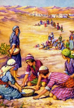 storm of manna